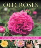 Cover-Bild zu Mikolajski, Andrew: Old Fashioned Roses