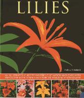 Cover-Bild zu Mikolajski, Andrew: Lilies