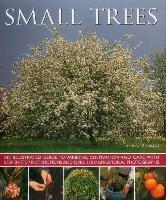 Cover-Bild zu Mikolajski Andrew: Small Trees