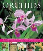 Cover-Bild zu Mikolajski Andrew: Orchids