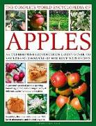 Cover-Bild zu Mikolajski, Andrew: The Complete World Encyclopedia of Apples: A Comprehensive Identification Guide to Over 400 Varieties Accompanied by 90 Scrumptious Recipes