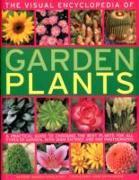 Cover-Bild zu Mikolajski, Andrew: Visual Encyclopedia of Garden Plants