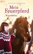 Cover-Bild zu Schreiber, Chantal: Mein Feuerpferd - Sturmfohlen