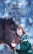 Cover-Bild zu Schreiber, Chantal: Mein Feuerpferd - Ritt im Nordlicht (eBook)