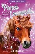 Cover-Bild zu Bentley, Sue: Poneii Fermeca¿i (eBook)