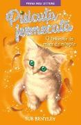Cover-Bild zu Bentley, Sue: Pisicu¿a Fermecata (eBook)