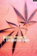 Cover-Bild zu Boyle, Tom Coraghessan: Budding Prospects