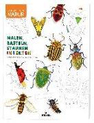 Cover-Bild zu Lasserre, Francois: Expedition Natur: Malen, Basteln, Staunen - Insekten