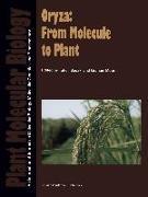 Cover-Bild zu Sasaki, Takuji (Hrsg.): Oryza: From Molecule to Plant (eBook)