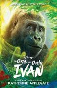 Cover-Bild zu Applegate, Katherine: One and Only Ivan (eBook)