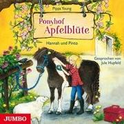 Cover-Bild zu Young, Pippa: Ponyhof Apfelblüte 04. Hannah und Pinto
