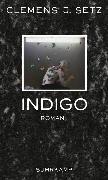 Cover-Bild zu Indigo von Setz, Clemens J.