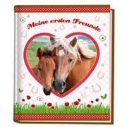 Cover-Bild zu Pferde Kindergartenfreundebuch von Panini