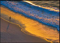 Cover-Bild zu Eschbach Textkarten Strandweg