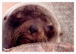 Cover-Bild zu Postkarte Eigentlich bin ich ja ganz anders