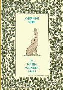 Cover-Bild zu Im Hasenwunderland von Siebe, Josephine