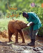 Cover-Bild zu Elephant Sanctuary Level 12