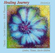 Cover-Bild zu Healing Journey
