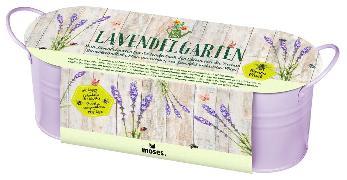 Cover-Bild zu Blatt & Blüte Lavendelgarten in Zinkwanne VE 3