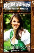 Cover-Bild zu Mühlbauer, Franz: HOLZKIRCHNER G´SCHICHTEN #3: Wohin führt dein Weg, Anna? (eBook)