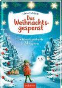 Cover-Bild zu Das Weihnachtsgespenst von Goldfarb, Tobias