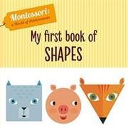 Cover-Bild zu Piroddi, Chiara: My First Book of Shapes (Montessori World of Achievements)