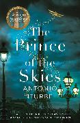 Cover-Bild zu The Prince of the Skies von Iturbe, Antonio