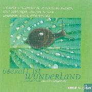 Cover-Bild zu Überall ist Wunderland (Audio Download) von Ringelnatz, Joachim
