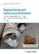 Cover-Bild zu Regenerierung und Sanierung von Brunnen (eBook) von Houben, Georg