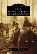 Cover-Bild zu Clark, Julie: Falk: Company Lumber Town of the American West