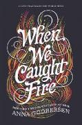 Cover-Bild zu When We Caught Fire von Godbersen, Anna