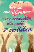 Cover-Bild zu Eulberg, Elizabeth: Wie wir einen Sommer (vergeblich) versuchten, uns nicht zu verlieben (eBook)