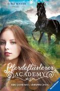 Cover-Bild zu Pferdeflüsterer-Academy, Band 2: Ein geheimes Versprechen von Mayer, Gina