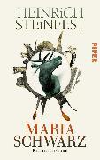 Cover-Bild zu Mariaschwarz (eBook) von Steinfest, Heinrich