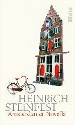 Cover-Bild zu Amsterdamer Novelle (eBook) von Steinfest, Heinrich