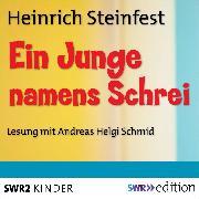 Cover-Bild zu Ein Junge namens Schrei (Audio Download) von Steinfest, Heinrich