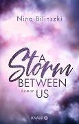 Cover-Bild zu A Storm Between Us von Bilinszki, Nina