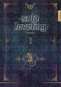 Cover-Bild zu Solo Leveling Roman 01 von Chugong