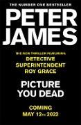 Cover-Bild zu Picture You Dead (eBook) von James, Peter