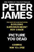 Cover-Bild zu Picture You Dead von James, Peter