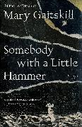 Cover-Bild zu Somebody with a Little Hammer von Gaitskill, Mary