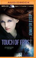 Cover-Bild zu Touch of Frost von Estep, Jennifer