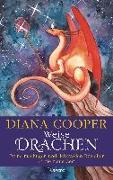 Cover-Bild zu Weise Drachen von Cooper, Diana