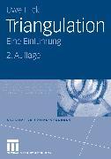 Cover-Bild zu Triangulation (eBook) von Flick, Uwe