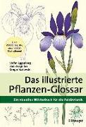 Cover-Bild zu Das illustrierte Pflanzen-Glossar von Eggenberg, Stefan