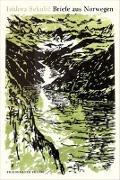 Cover-Bild zu Briefe aus Norwegen von Sekulic, Isidora