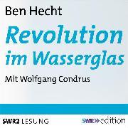 Cover-Bild zu Revolution im Wasserglas (Audio Download) von Hecht, Ben