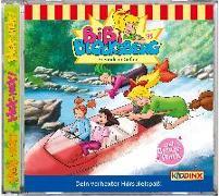 Cover-Bild zu Bibi Blocksberg 135. Freunde in Gefahr von Bibi Blocksberg