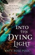 Cover-Bild zu Into the Dying Light (eBook) von Pool, Katy Rose