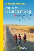 Cover-Bild zu Auf dem Jerusalemweg (eBook) von Aschauer, Johannes